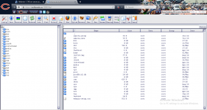 webmin file manager